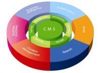 CMS چیست؟تفاوت CMSهای شرکتی و رایگان